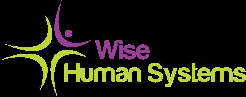 Locuri de munca SC Wise Human Systems SRL